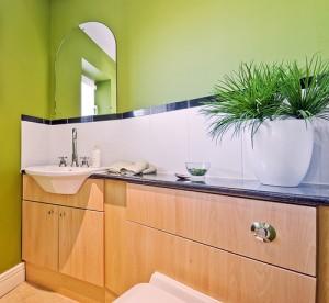 foliage-plant-toilet