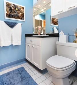 toilet-lightblue